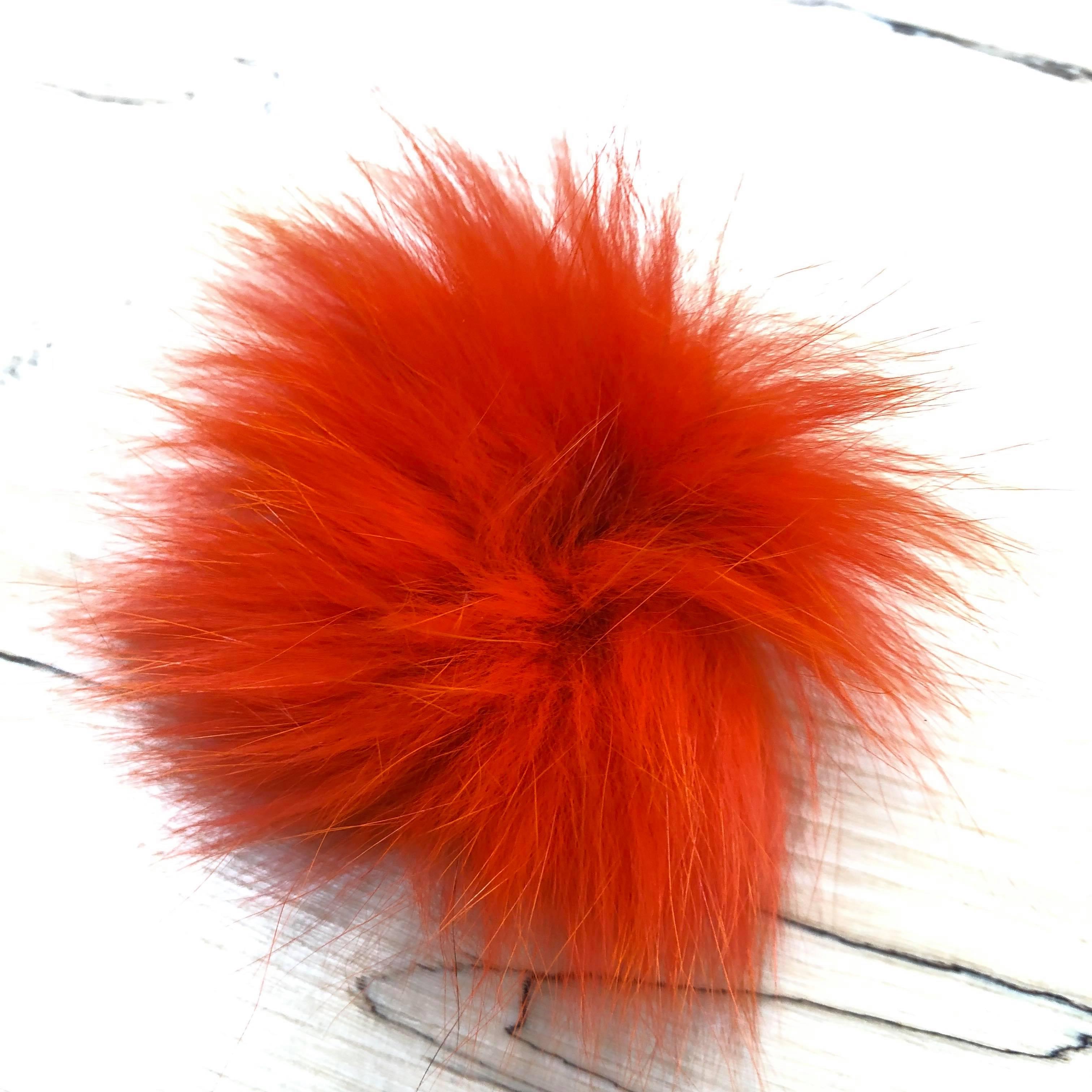 arctic fox orange