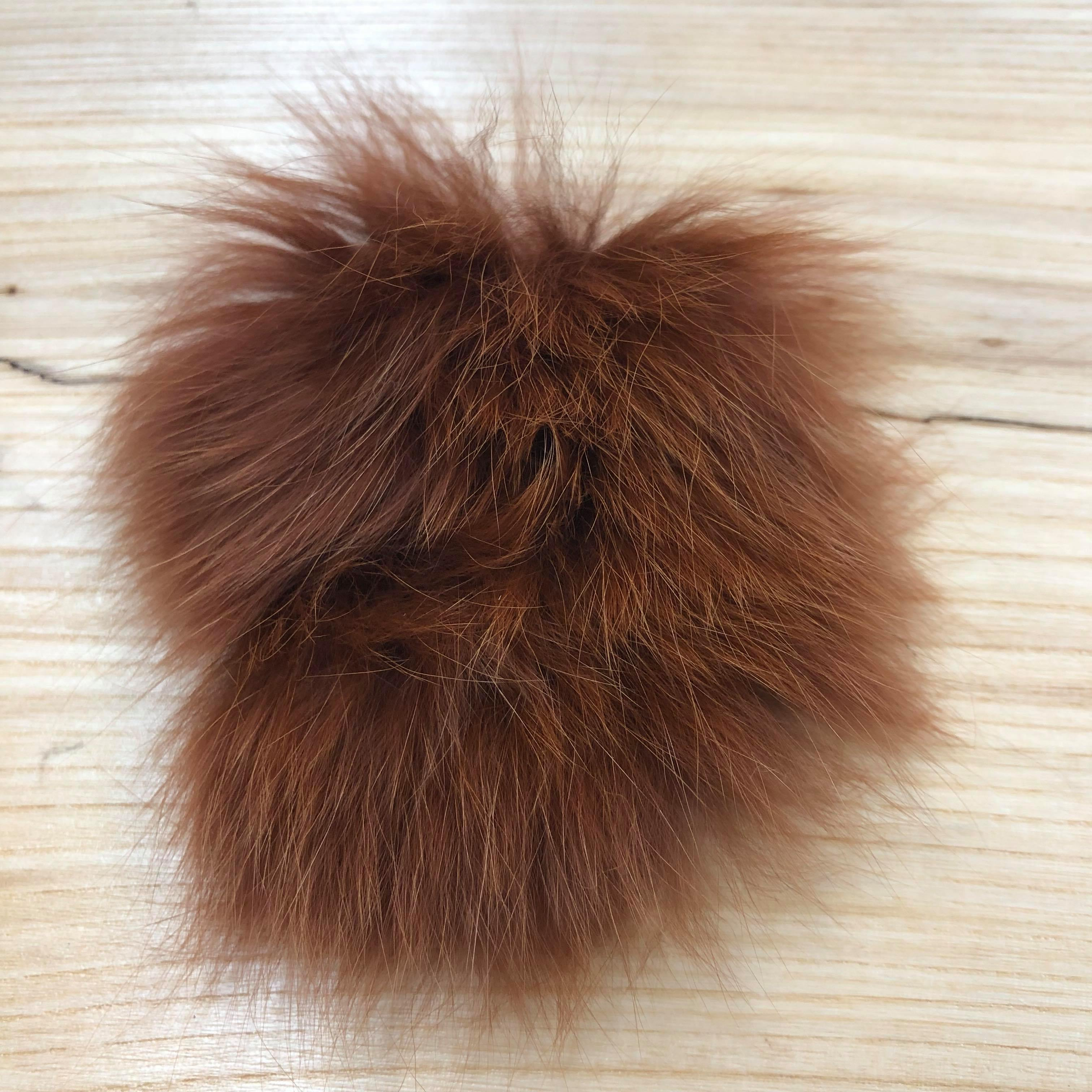arctic fox brown