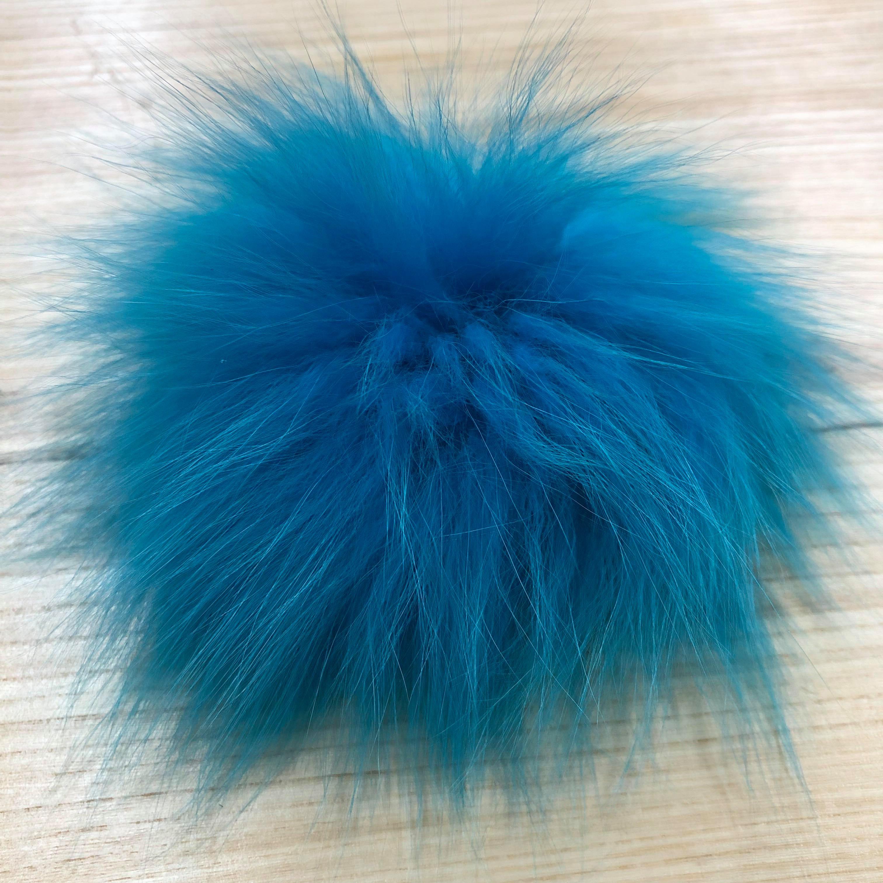 arctic fox blue